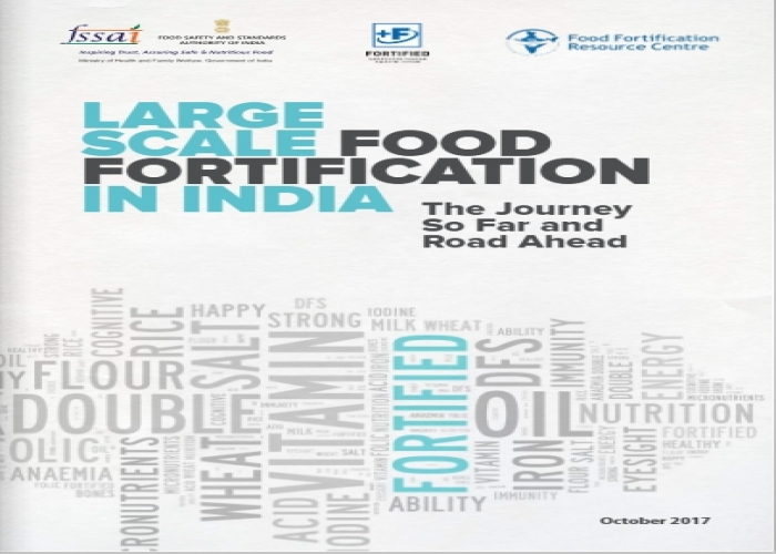 Large Scale Food Fortification